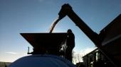 Grain Baggers - 10007_grain Baggers