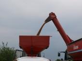 Grain Baggers - 10014_grain Baggers